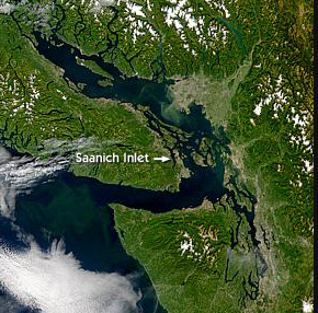 SeaWiFS image of Vancouver Island, featuring Saanich Inlet
