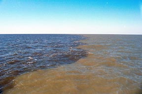 Sediment laden 